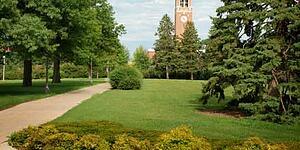 Tree Campus USA on Corona Tools Treechat