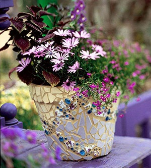 Proven Winners Mosaic Magic Pinterest Boaard