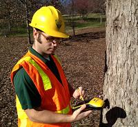 Bartlett TreeInventory DataCollection resized 600