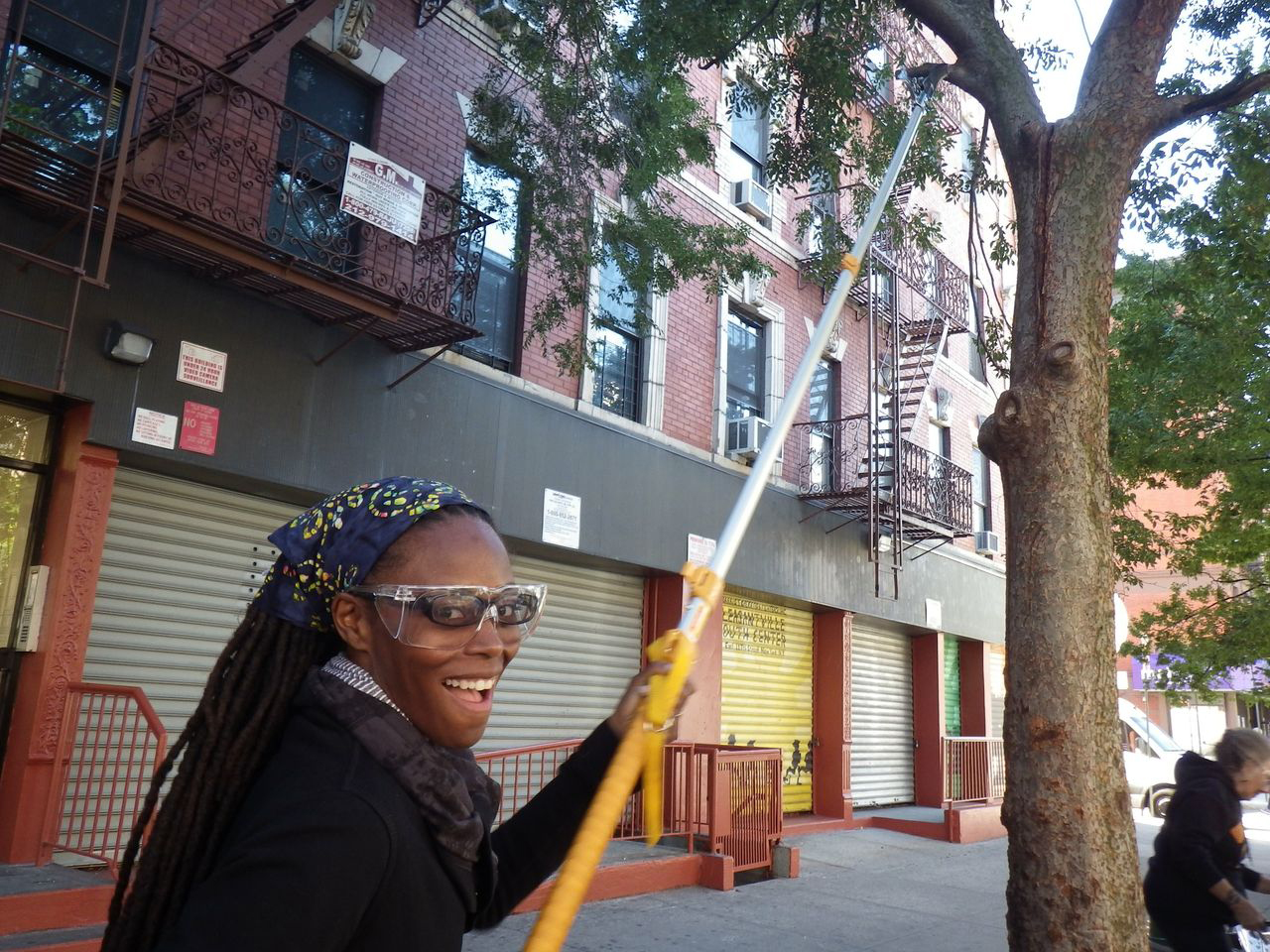 ACTrees New York   Volunteer Tree Care