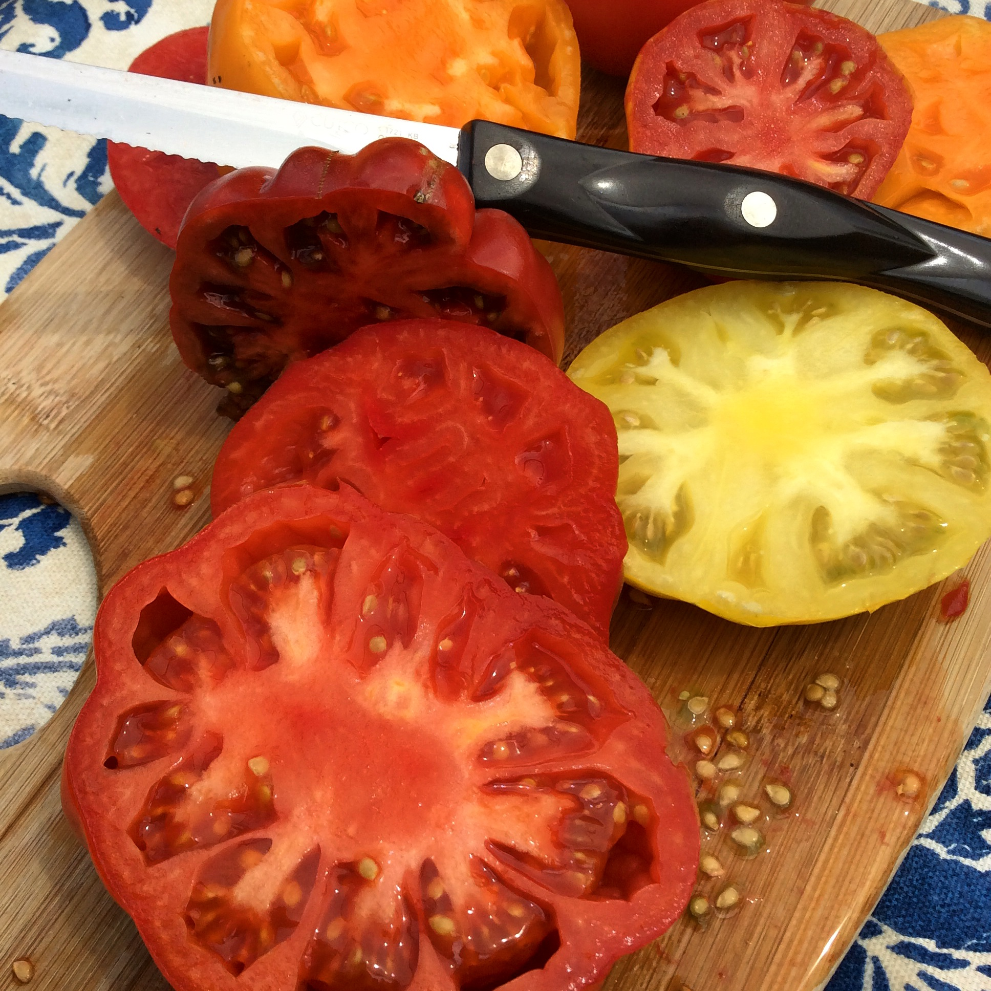 Tomatoes3-30-2015_Brie