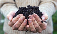 Soil Is Life, photo credit Shutterstock, for Corona Tools