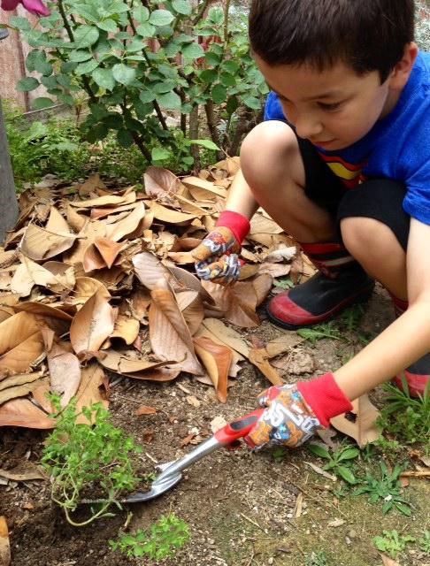 Corona Tools Kids Compost