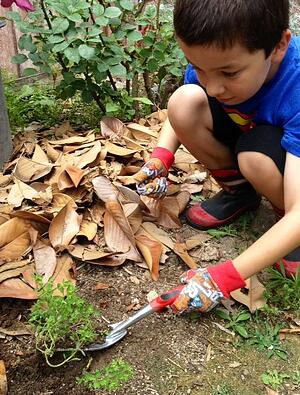 Corona Tools Kids Compost
