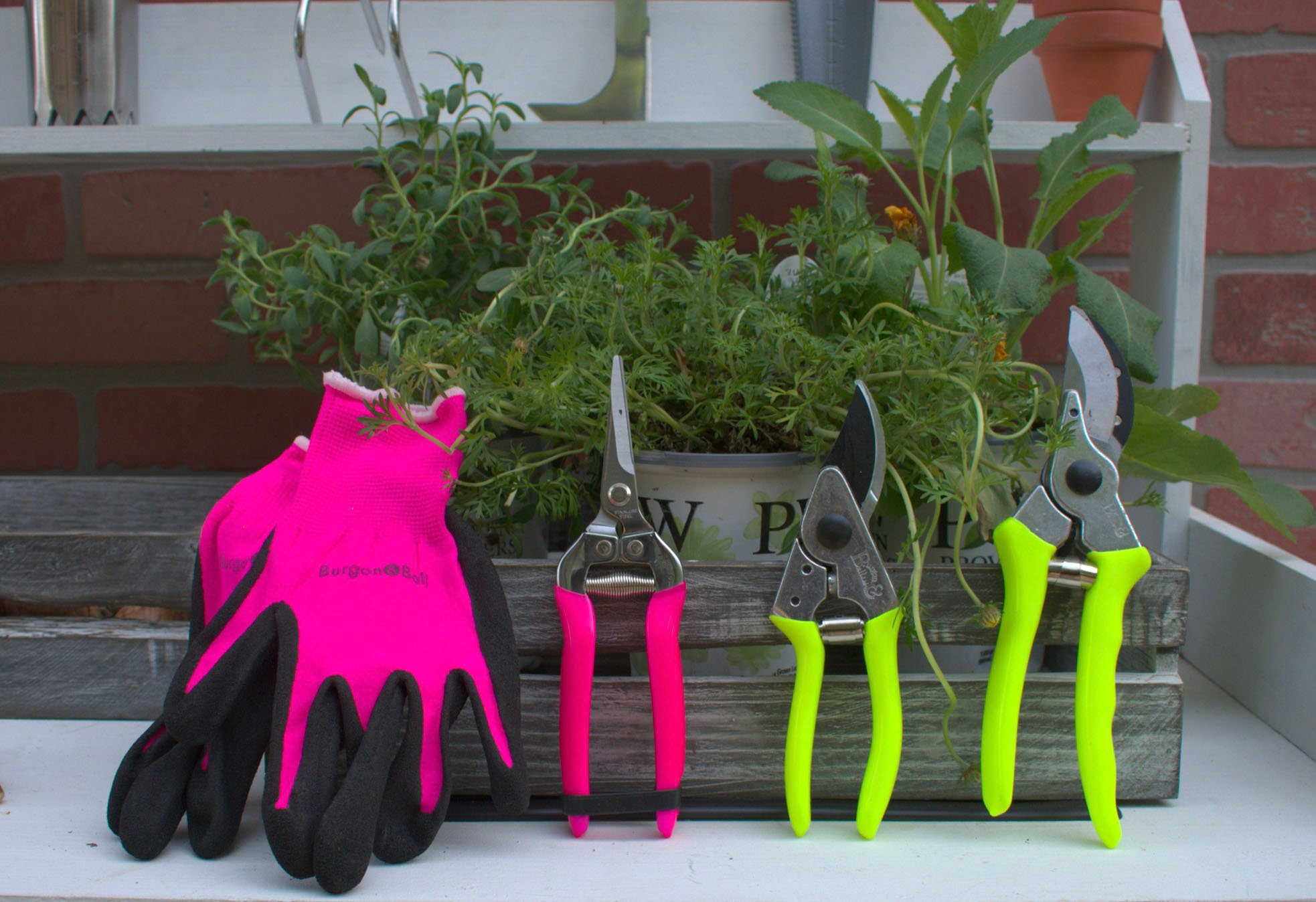 Corona Tools fluorescent gloves and hand pruners on a potting bench