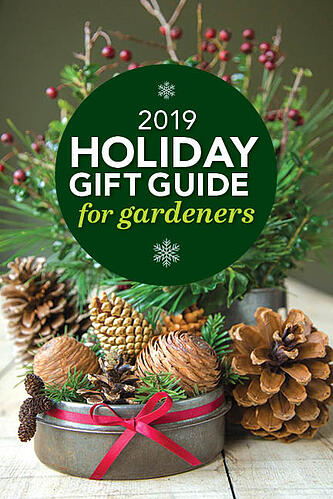 FG holiday gift guide front cover