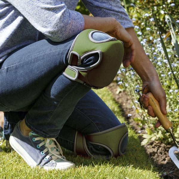 KL_fall-gardening