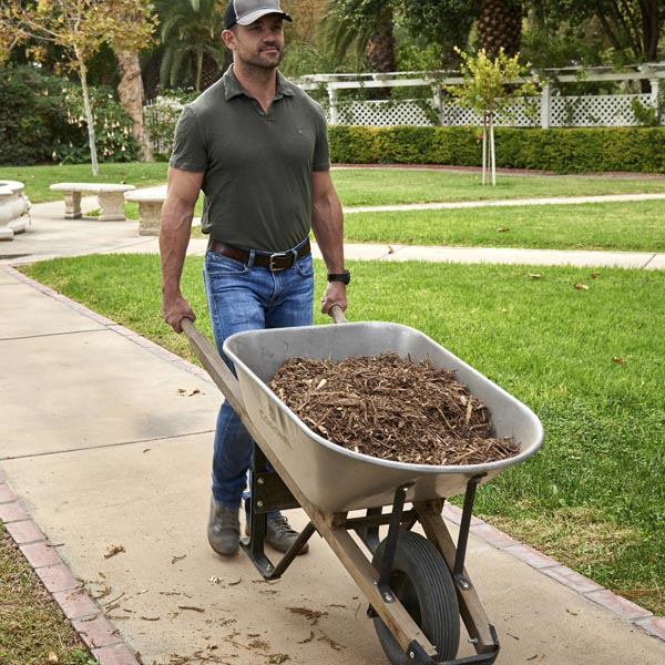 WB_fall gardening