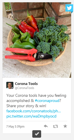coronaproud2